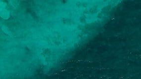 Tiro de arriba de un océano azul tropical cerca de Cancun metrajes