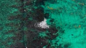 Tiro de arriba de un océano azul tropical cerca de Cancun almacen de metraje de vídeo