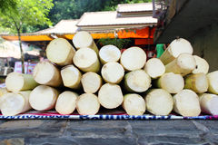 Tiro de bambu imagens de stock royalty free