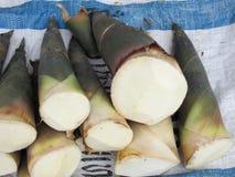 Tiro de bambu Foto de Stock Royalty Free
