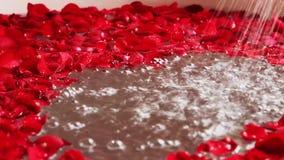 Tiro de la cacerola de pétalos color de rosa rojos en bañera con la ducha de funcionamiento, hotel Amar Villas, Agra, Uttar Prade metrajes