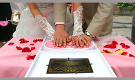 Tiro de los anillos de bodas Foto de archivo