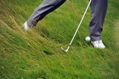 Tiro de microplaqueta do golfe do áspero Fotos de Stock