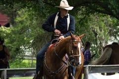 Tiro de Mounted do vaqueiro Fotografia de Stock