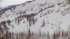 Tiro de um helicóptero que decola da floresta do inverno video estoque