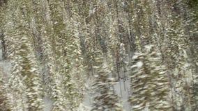 Tiro de um helicóptero que decola da floresta do inverno vídeos de arquivo