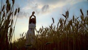 Tiro del ángulo bajo de la mujer joven que aumenta para arriba sus brazos en campo de trigo en la puesta del sol metrajes