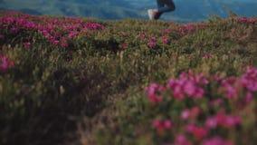Tiro del ángulo bajo del turista femenino elegante que corre abajo de la colina florecida de la montaña Ciérrese encima de vista  almacen de metraje de vídeo