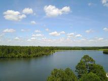 Tiro del abejón de la opinión del lago Imagen de archivo libre de regalías
