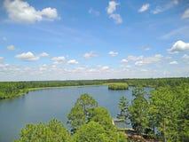 Tiro del abejón de la opinión del lago Imagen de archivo