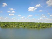 Tiro del abejón de la opinión del lago Fotografía de archivo libre de regalías