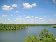 Tiro del abejón de la opinión del lago Foto de archivo libre de regalías