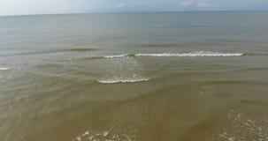 tiro del abejón 4k que vuela sobre el mar Báltico metrajes