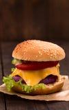 Tiro del primer del cheeseburger Imagenes de archivo