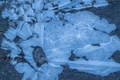 Tiro del primer del hielo foto de archivo
