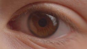 Tiro del primo piano dell'occhio verdastro con la riflessione e del chiarore dalla lampada che circonda intorno a cambiare l'illu archivi video