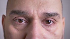 Tiro del primo piano del fronte maschio caucasico invecchiato medio con gli occhi marroni che esaminano diritto la macchina fotog video d archivio