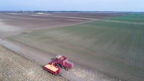 Tiro del raccolto di cereale dal fuco Immagini Stock