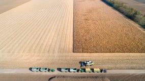 Tiro del raccolto di cereale dal fuco Fotografia Stock