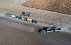 Tiro del raccolto di cereale dal fuco Fotografie Stock
