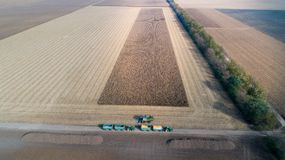 Tiro del raccolto di cereale dal fuco Immagine Stock Libera da Diritti