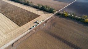 Tiro del raccolto di cereale dal fuco Fotografie Stock Libere da Diritti