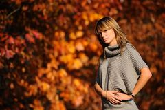 Tiro di foto di autunno Immagine Stock Libera da Diritti