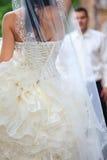 Tiro do casamento Imagens de Stock Royalty Free