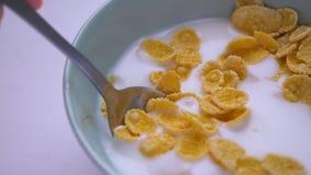 Tiro do close up da bacia doce do café da manhã de cereal e de leite Mão que mergulha uma colher em saboroso toda a refeição amer video estoque