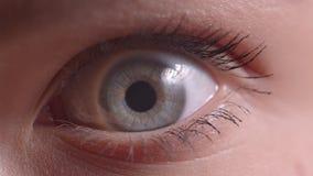 Tiro do close-up dos olhos azuis que pisca com o alargamento nele que olha para baixo e na c?mera atentamente vídeos de arquivo