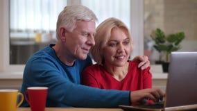 Tiro do close up dos pares felizes bonitos superiores que consultam no portátil na mesa com os copos com chá dentro em um acolhed vídeos de arquivo