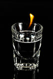 Tiro do fogo Imagem de Stock Royalty Free