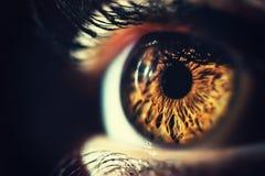 Tiro do macro do olho humano imagens de stock royalty free