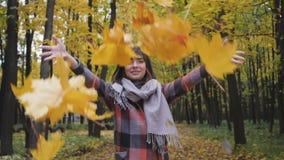 Tiro en las hojas superiores del amarillo Muchacha del otoño que camina en parque de la ciudad Retrato de la mujer joven preciosa metrajes
