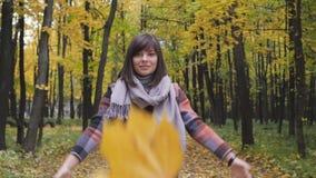 Tiro en las hojas superiores del amarillo Muchacha del otoño que camina en parque de la ciudad Retrato de la mujer joven preciosa almacen de metraje de vídeo