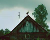 Tiro escénico de los edificios viejos del granero con la cigüeña en el tejado Imagen de archivo libre de regalías