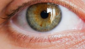 Tiro fêmea do close up do olho humano fotografia de stock royalty free