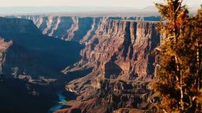 Tiro hermoso del fondo del árbol de pino sobre las montañas soleadas majestuosas en sorprender el parque nacional Arizona los E.E almacen de metraje de vídeo
