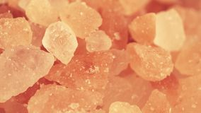 Tiro Himalayan rosado de la macro de la sal almacen de video