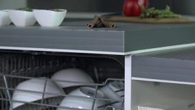 Tiro inclinable de abrir el lavaplatos por completo del plato metrajes