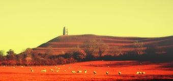 Tiro infravermelho do sumário do Tor de Glastonbury imagens de stock