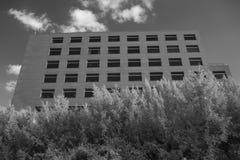 Tiro infravermelho preto e branco do prédio de escritórios imagens de stock royalty free