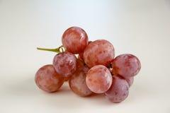Tiro leggero della stanza dell'uva Immagine Stock
