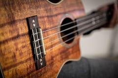 Tiro lleno del cuerpo de la guitarra de Ukelele Fotos de archivo