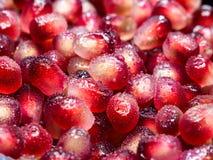 Tiro macro da semente fresca da romã com gotas de água imagem de stock royalty free