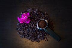Tiro macro de feijões de café Foto de Stock Royalty Free