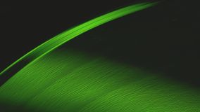 Tiro macro de A que gira la detención superficial del disco de vinilo de Greenlit