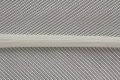 Tiro macro de una pluma Imagen de archivo