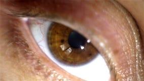 Tiro macro del ojo de seres humanos con la manzana del luz-flash de la reacción del ojo almacen de video