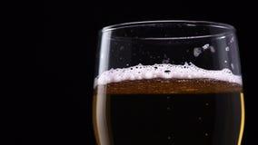 Tiro macro del primer de pequeñas burbujas de la subida de la cerveza hacia arriba en un fondo negro metrajes